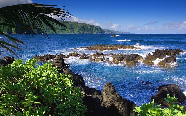 International Moving Company to Hawaii   Coast of Hawaii
