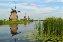 Moving Company to Netherlands
