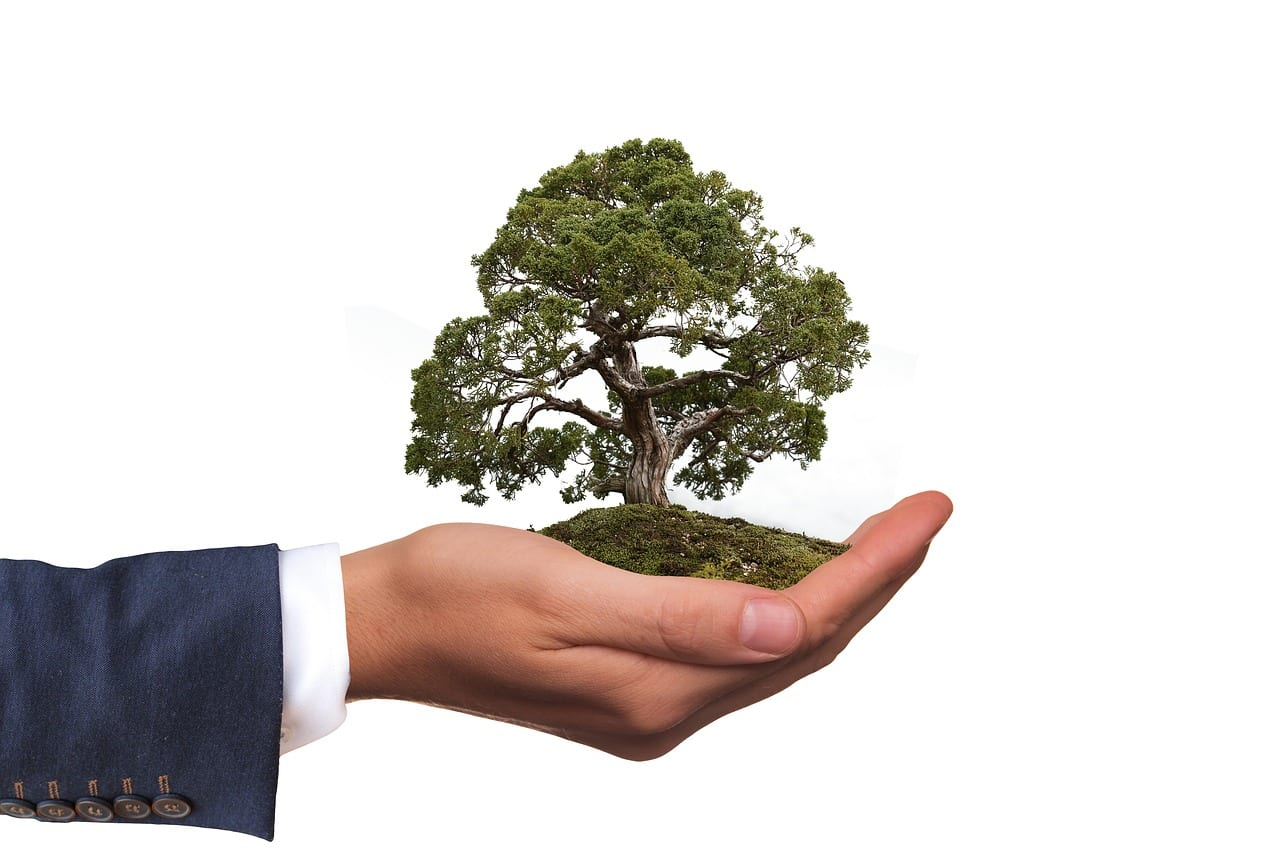 eco friendly moving company