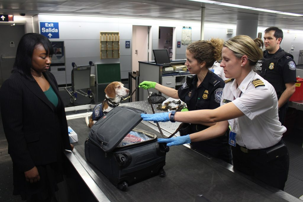 International Customs Regulations - The complete guide